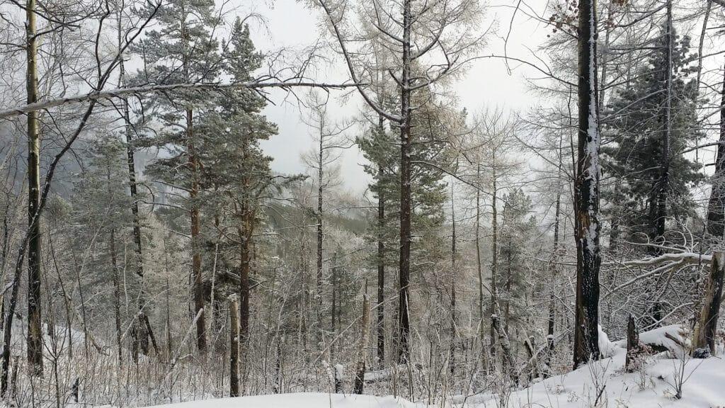 Listvijanka- great Baikal trail