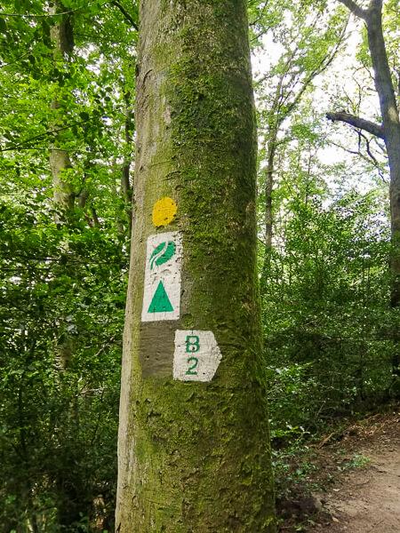 Wandelroute B2 Mullerthal