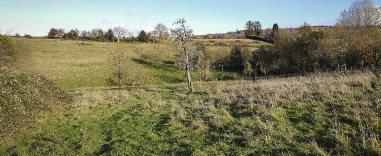Heuvel land Limburg
