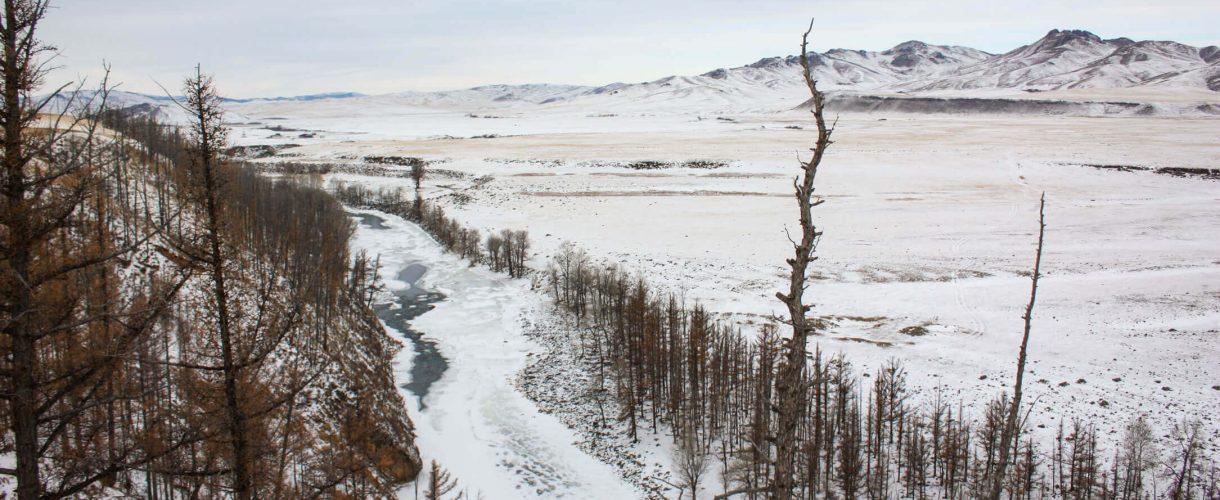 Reizen naar Mongolië