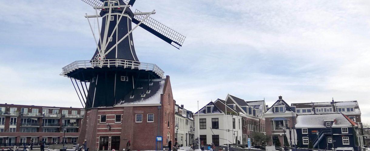 Vakantie in eigen land, Nederland